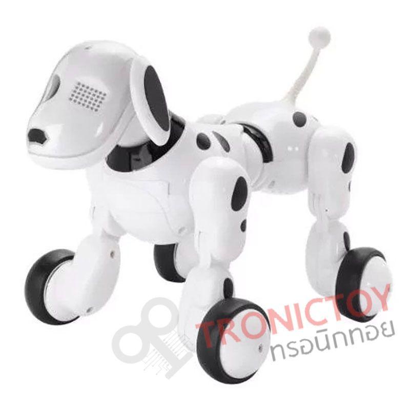 dog intelligence overall